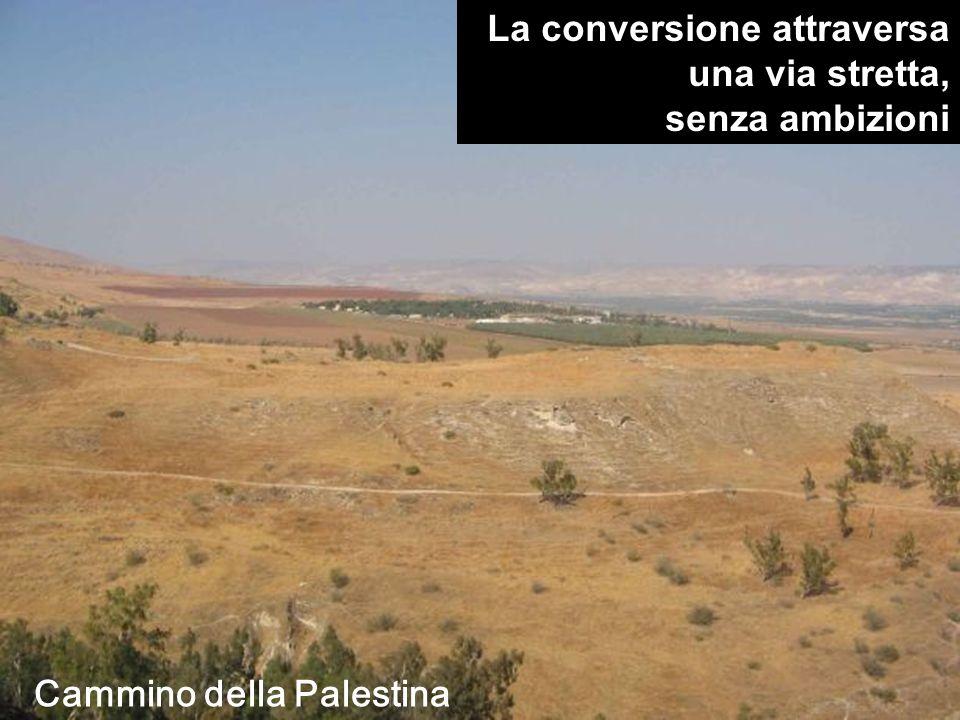 La conversione attraversa una via stretta, senza ambizioni Cammino della Palestina