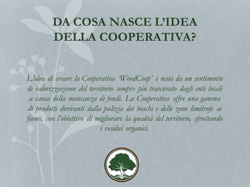 DA COSA NASCE L'IDEA DELLA COOPERATIVA.