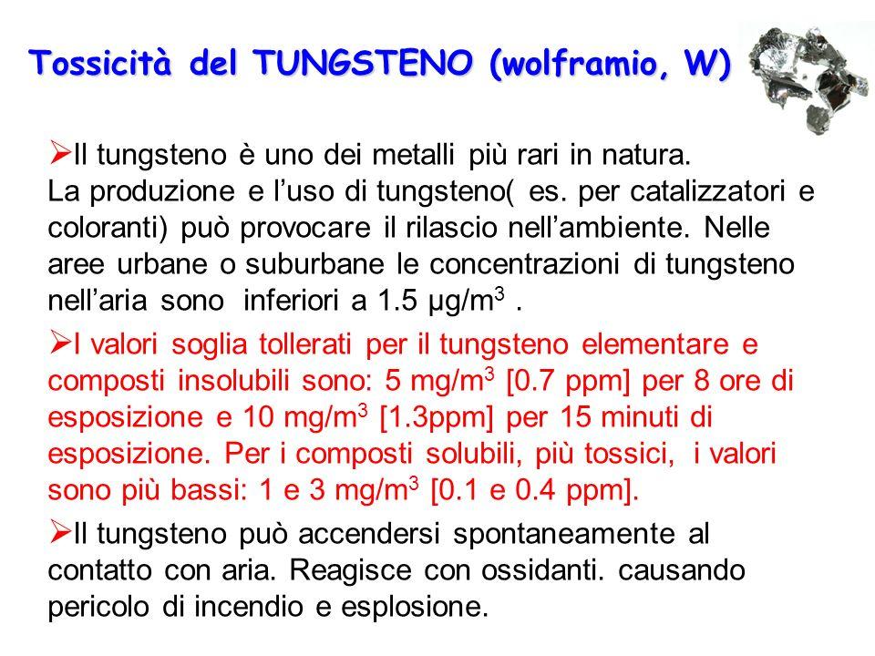 Tossicità del TUNGSTENO (wolframio,W) Tossicità del TUNGSTENO (wolframio, W)  Il tungsteno è uno dei metalli più rari in natura. La produzione e l'us
