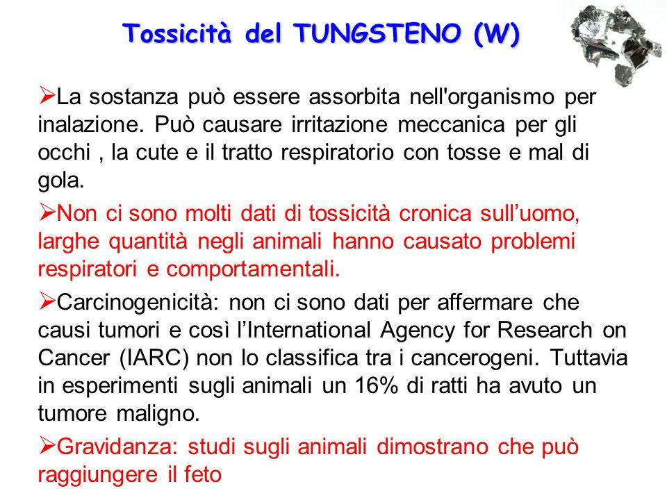 Tossicità del TUNGSTENO (W)  La sostanza può essere assorbita nell'organismo per inalazione. Può causare irritazione meccanica per gli occhi, la cute