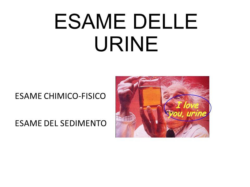 ESAME DELLE URINE ESAME CHIMICO-FISICO ESAME DEL SEDIMENTO