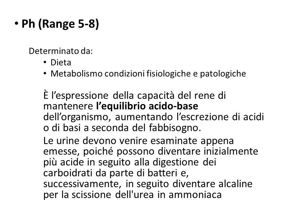 Ph (Range 5-8) Determinato da: Dieta Metabolismo condizioni fisiologiche e patologiche È l'espressione della capacità del rene di mantenere l'equilibr
