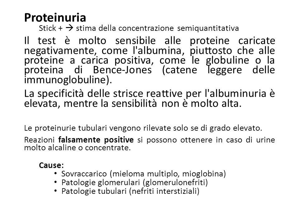 Proteinuria Stick +  stima della concentrazione semiquantitativa Il test è molto sensibile alle proteine caricate negativamente, come l'albumina, piu