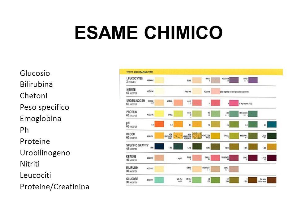 ESAME CHIMICO Glucosio Bilirubina Chetoni Peso specifico Emoglobina Ph Proteine Urobilinogeno Nitriti Leucociti Proteine/Creatinina