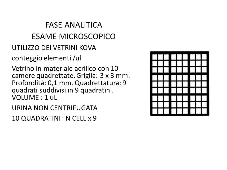 FASE ANALITICA ESAME MICROSCOPICO UTILIZZO DEI VETRINI KOVA conteggio elementi /ul Vetrino in materiale acrilico con 10 camere quadrettate. Griglia: 3