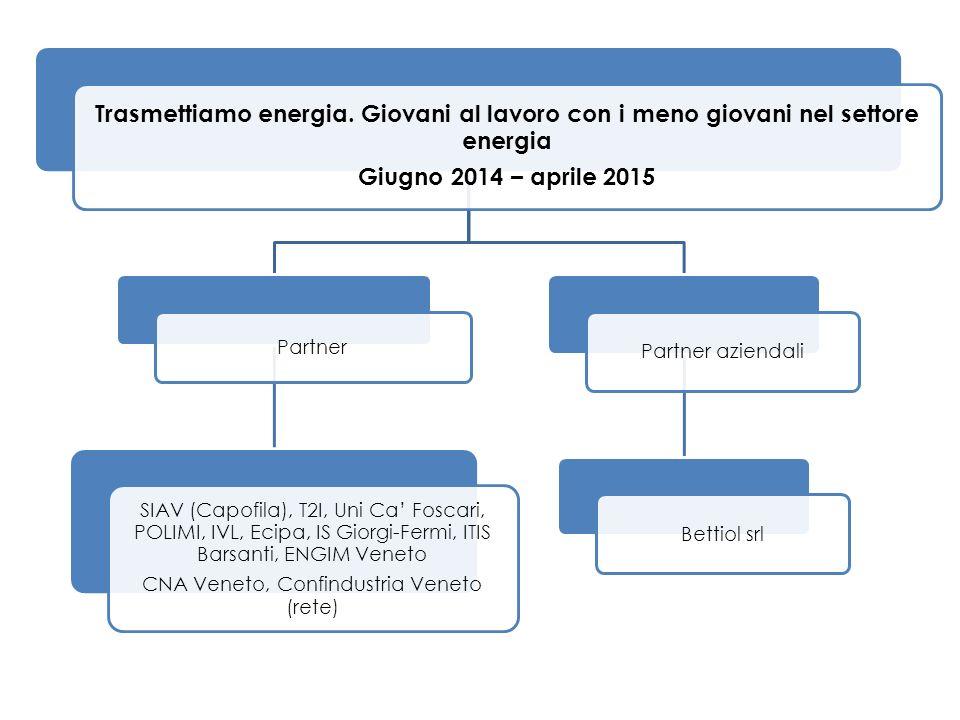 Trasmettiamo energia. Giovani al lavoro con i meno giovani nel settore energia Giugno 2014 – aprile 2015 Partner SIAV (Capofila), T2I, Uni Ca' Foscari
