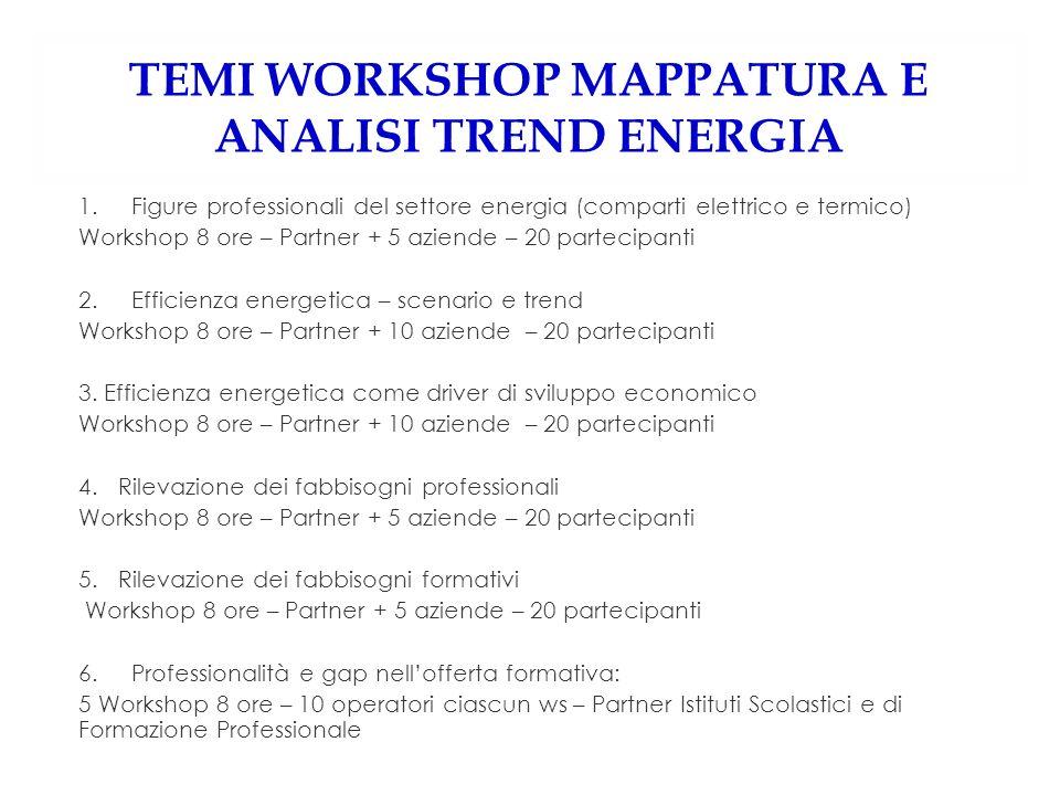 TEMI WORKSHOP MAPPATURA E ANALISI TREND ENERGIA 1.Figure professionali del settore energia (comparti elettrico e termico) Workshop 8 ore – Partner + 5