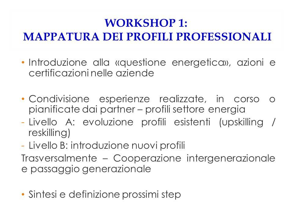 WORKSHOP 1: MAPPATURA DEI PROFILI PROFESSIONALI Introduzione alla «questione energetica», azioni e certificazioni nelle aziende Condivisione esperienz