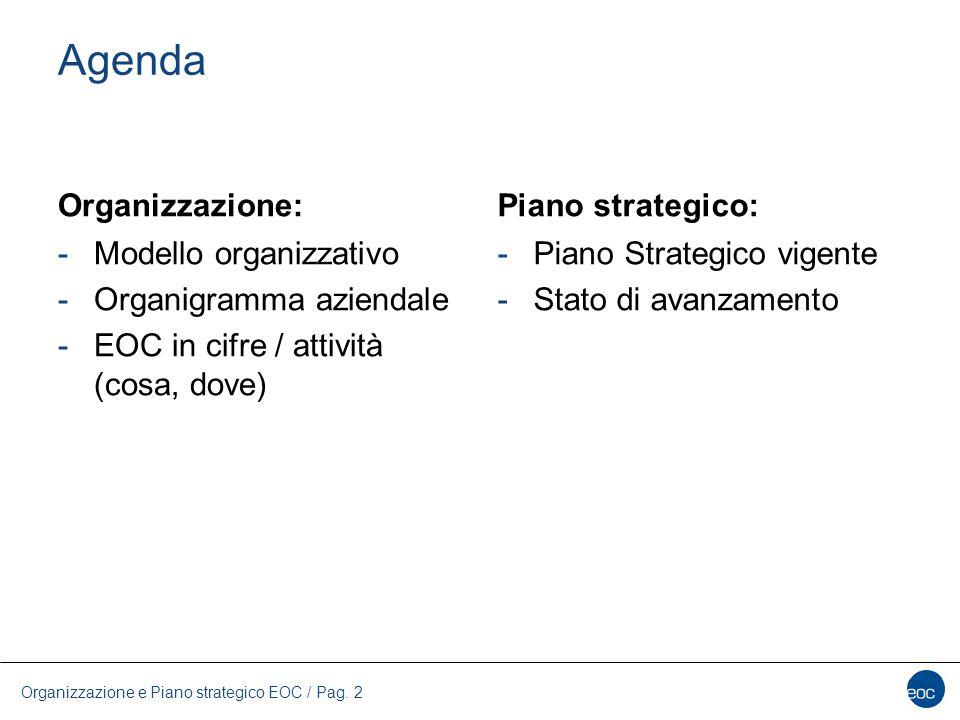 Agenda Organizzazione: -Modello organizzativo -Organigramma aziendale -EOC in cifre / attività (cosa, dove) Piano strategico: -Piano Strategico vigent
