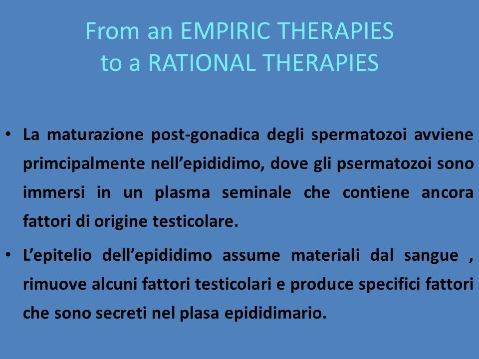 From an EMPIRIC THERAPIES to a RATIONAL THERAPIES La maturazione post-gonadica degli spermatozoi avviene primcipalmente nell'epididimo, dove gli pserm