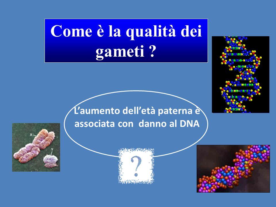 L'aumento dell'età paterna è associata con danno al DNA Come è la qualità dei gameti ?