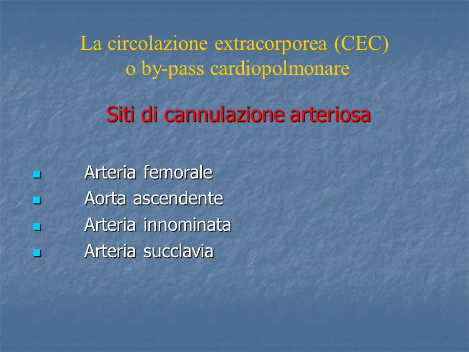 Siti di cannulazione arteriosa Arteria femorale Arteria femorale Aorta ascendente Aorta ascendente Arteria innominata Arteria innominata Arteria succl