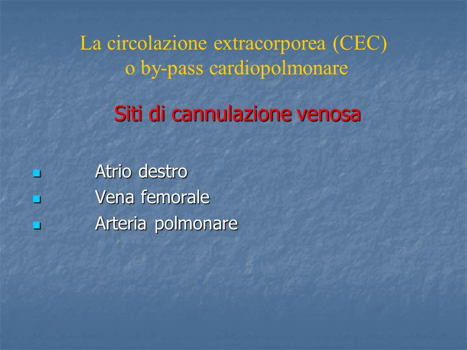Siti di cannulazione venosa Atrio destro Atrio destro Vena femorale Vena femorale Arteria polmonare Arteria polmonare