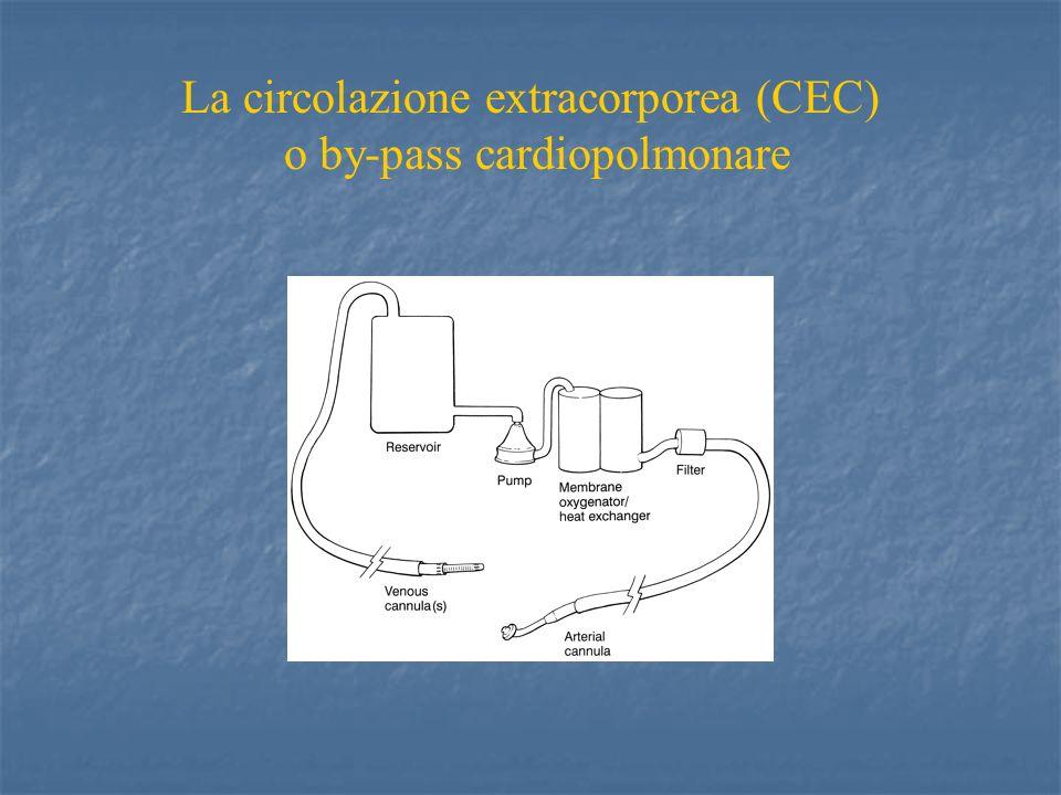 Cardiopatie congenite Cianogene con : Cianogene con : Ridotto flusso arterioso polmonare