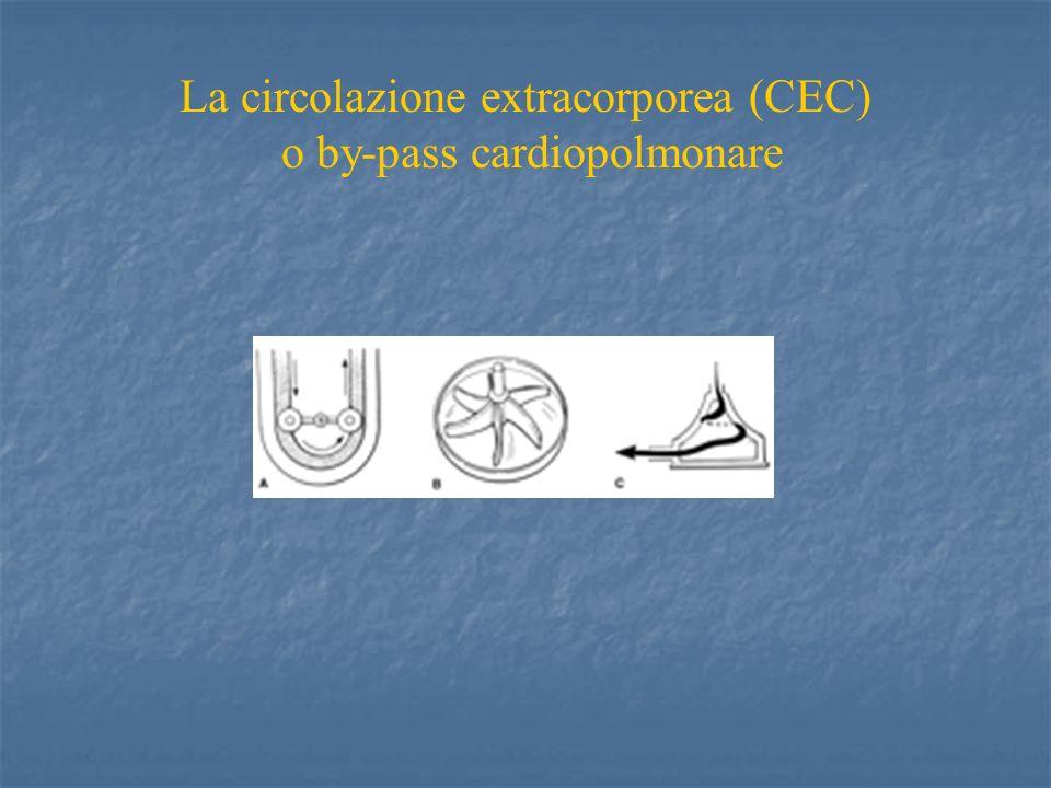 CLINICA Coartazione aortica ecocardiogrammaecocardiogramma angio-TCangio-TC (aortografia)(aortografia)