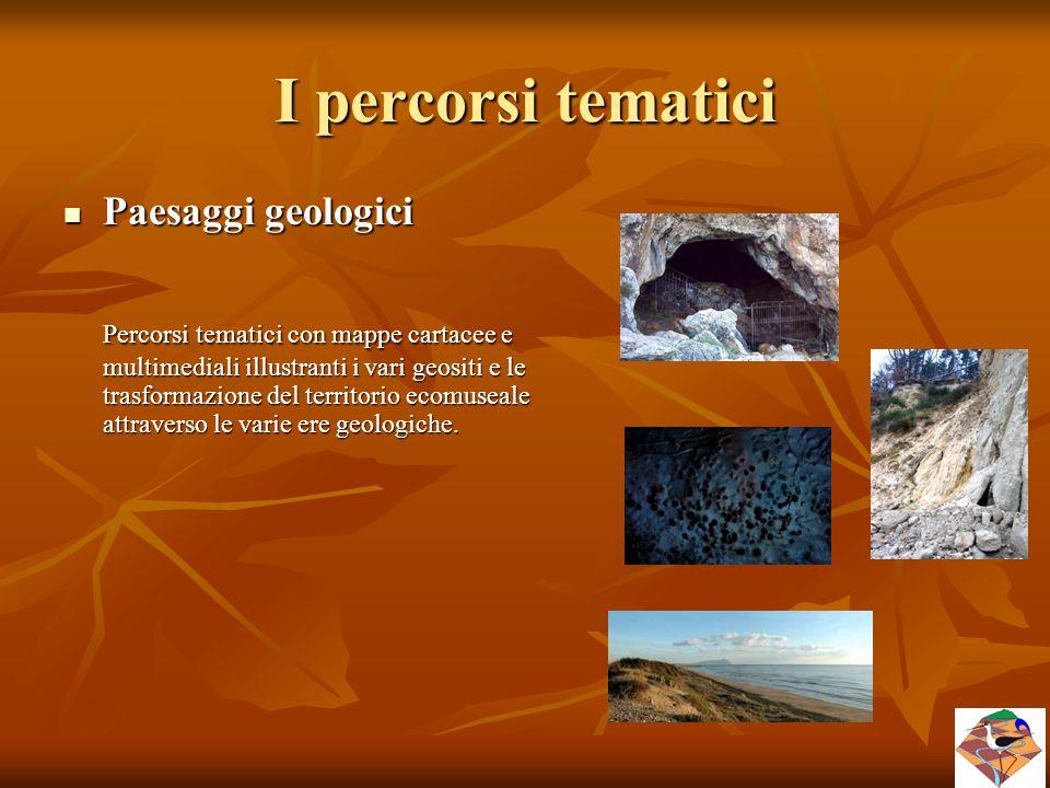 I percorsi tematici Paesaggi geologici Paesaggi geologici Percorsi tematici con mappe cartacee e multimediali illustranti i vari geositi e le trasform