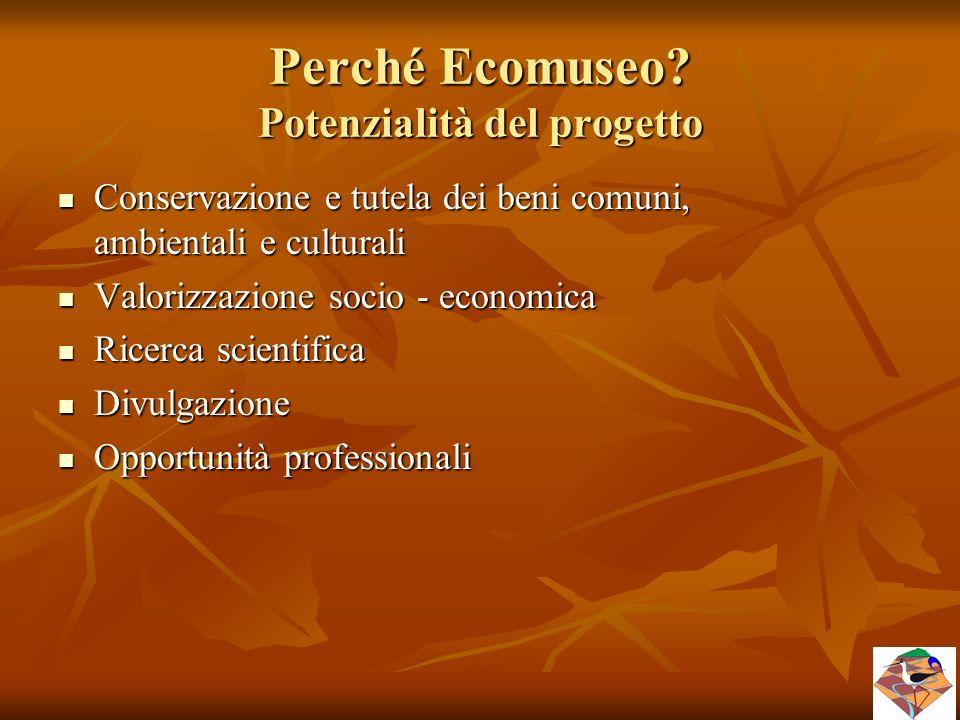 Perché Ecomuseo? Potenzialità del progetto Conservazione e tutela dei beni comuni, ambientali e culturali Conservazione e tutela dei beni comuni, ambi