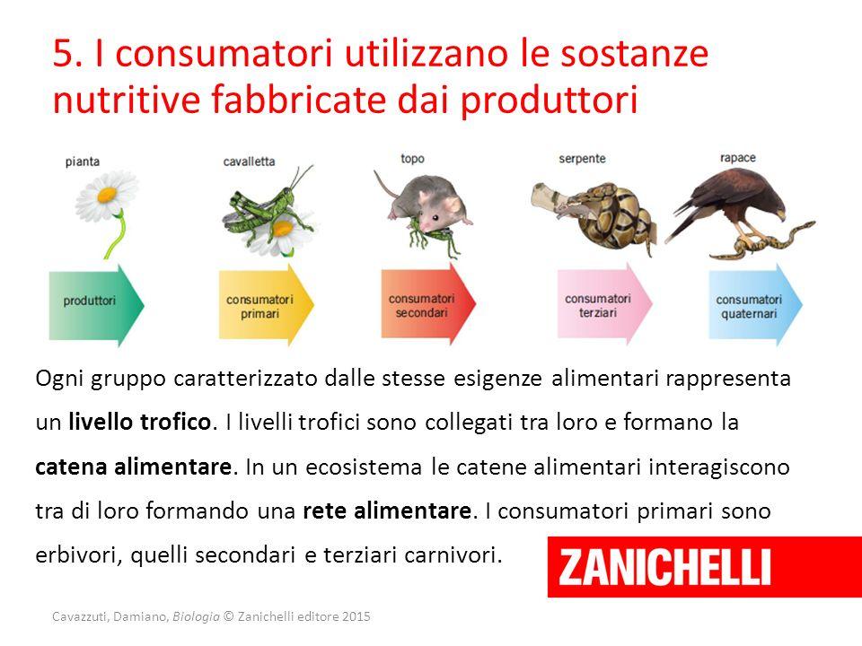 Cavazzuti, Damiano, Biologia © Zanichelli editore 2015 5. I consumatori utilizzano le sostanze nutritive fabbricate dai produttori Ogni gruppo caratte