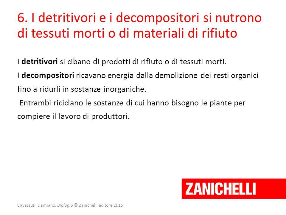 Cavazzuti, Damiano, Biologia © Zanichelli editore 2015 6. I detritivori e i decompositori si nutrono di tessuti morti o di materiali di rifiuto I detr