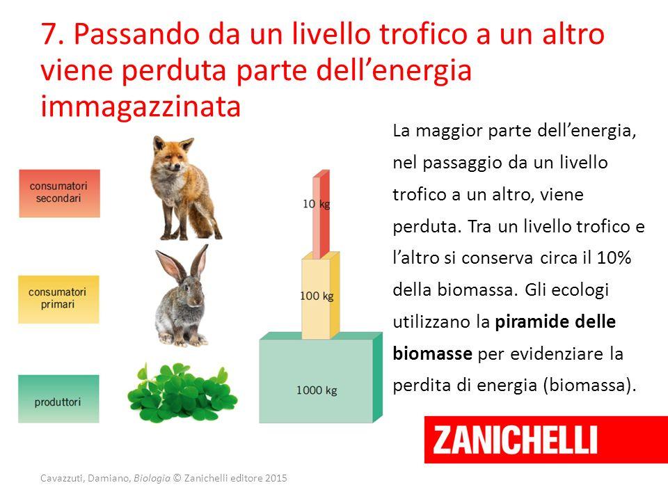 Cavazzuti, Damiano, Biologia © Zanichelli editore 2015 7. Passando da un livello trofico a un altro viene perduta parte dell'energia immagazzinata La