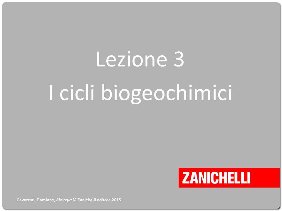 Lezione 3 I cicli biogeochimici Cavazzuti, Damiano, Biologia © Zanichelli editore 2015