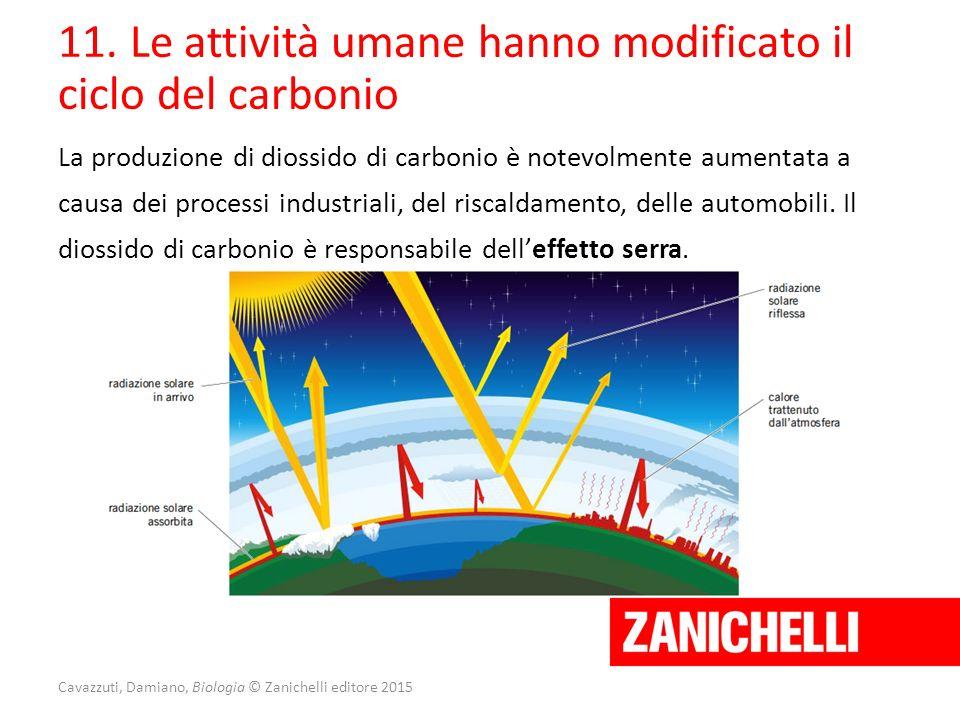 Cavazzuti, Damiano, Biologia © Zanichelli editore 2015 11. Le attività umane hanno modificato il ciclo del carbonio La produzione di diossido di carbo