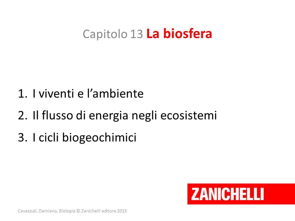 Capitolo 13 La biosfera 1.I viventi e l'ambiente 2.Il flusso di energia negli ecosistemi 3.I cicli biogeochimici Cavazzuti, Damiano, Biologia © Zanich