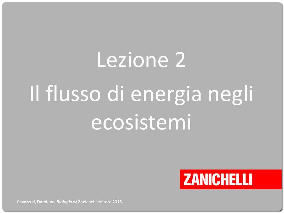 Lezione 2 Il flusso di energia negli ecosistemi Cavazzuti, Damiano, Biologia © Zanichelli editore 2015