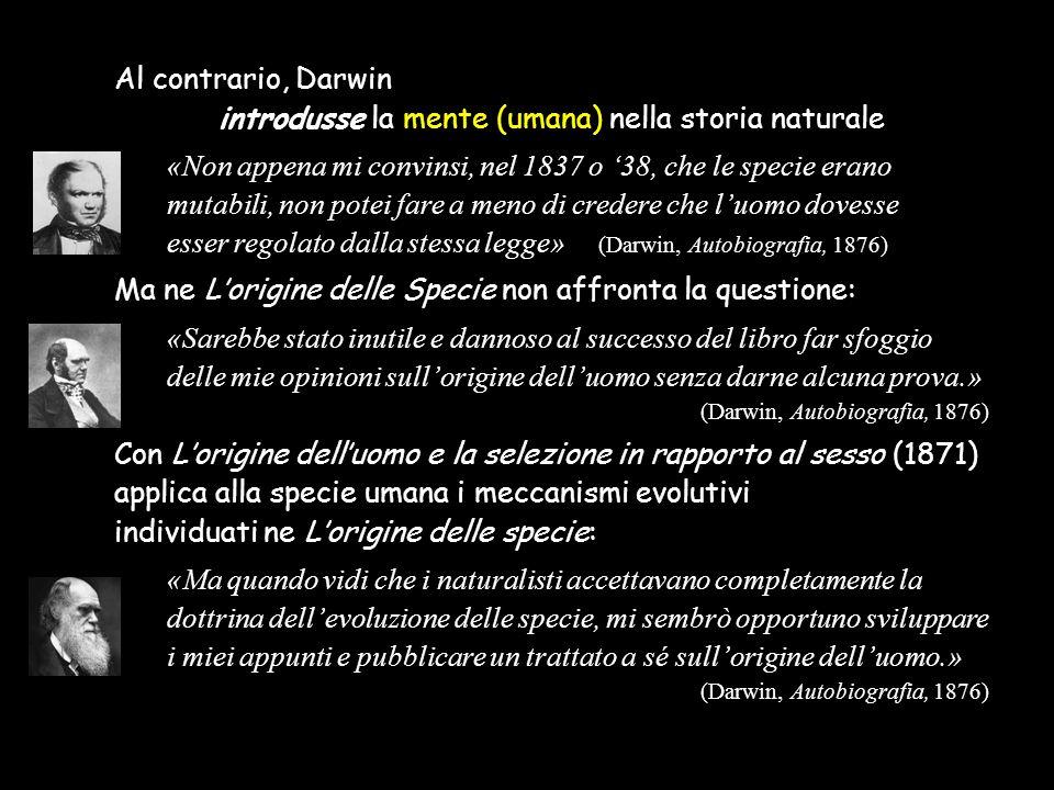 Al contrario, Darwin introdusse la mente (umana) nella storia naturale «Non appena mi convinsi, nel 1837 o '38, che le specie erano mutabili, non pote