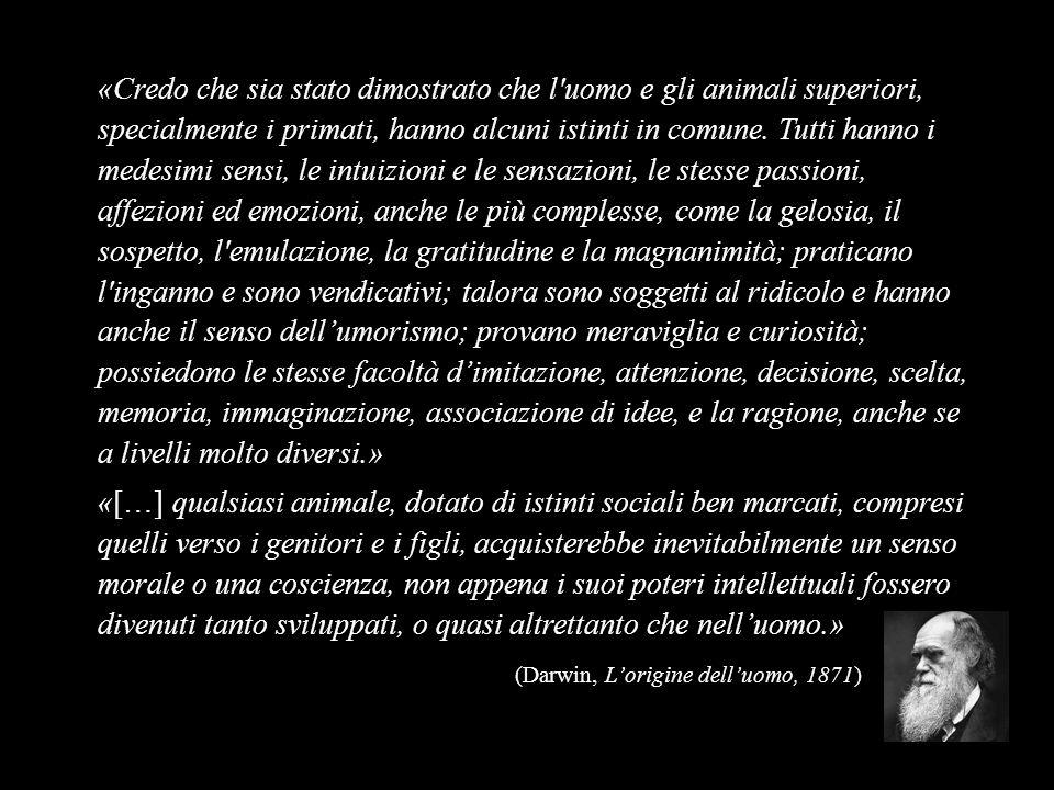 «Credo che sia stato dimostrato che l'uomo e gli animali superiori, specialmente i primati, hanno alcuni istinti in comune. Tutti hanno i medesimi sen