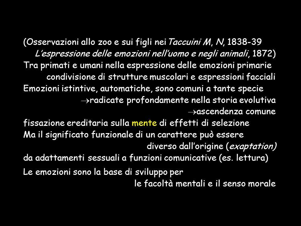 (Osservazioni allo zoo e sui figli neiTaccuini M, N, 1838-39 L'espressione delle emozioni nell'uomo e negli animali, 1872) Tra primati e umani nella e