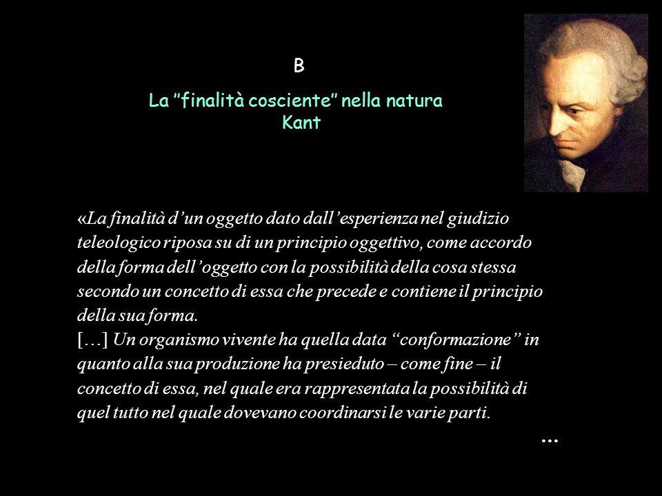 B La ''finalità cosciente'' nella natura Kant «La finalità d'un oggetto dato dall'esperienza nel giudizio teleologico riposa su di un principio oggett