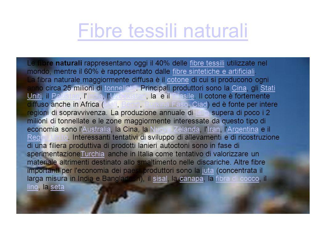 Fibre tessili naturali Le fibre naturali rappresentano oggi il 40% delle fibre tessili utilizzate nel mondo, mentre il 60% è rappresentato dalle fibre