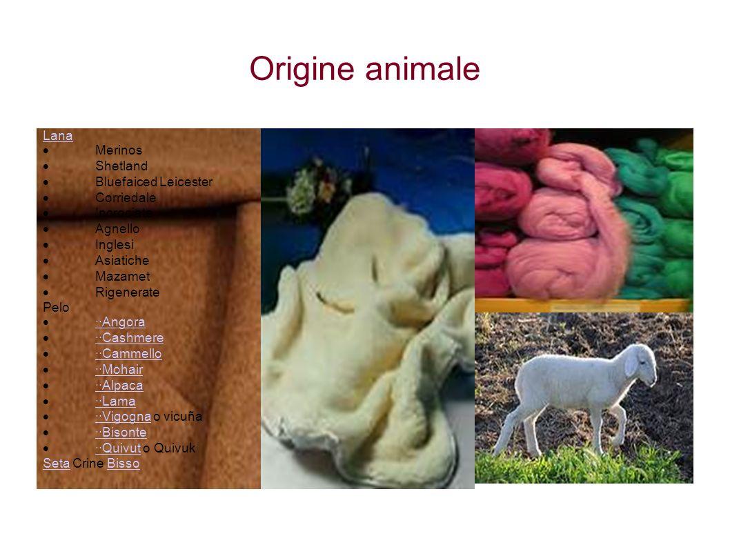 Origine animale Lana  Merinos  Shetland  Bluefaiced Leicester  Corriedale  Incrociate  Agnello  Inglesi  Asiatiche  Mazamet  Rigenerate Pelo
