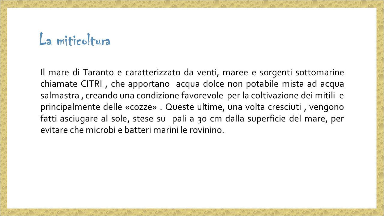 La miticoltura Il mare di Taranto e caratterizzato da venti, maree e sorgenti sottomarine chiamate CITRI, che apportano acqua dolce non potabile mista ad acqua salmastra, creando una condizione favorevole per la coltivazione dei mitili e principalmente delle «cozze».