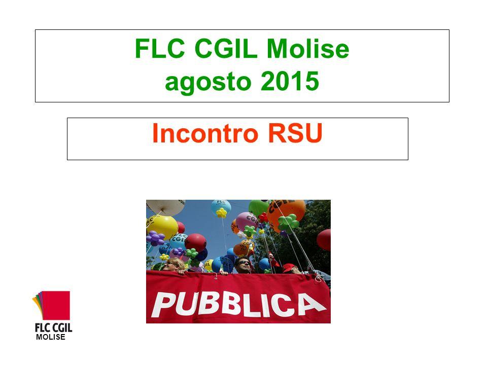 FLC CGIL Molise agosto 2015 Incontro RSU MOLISE
