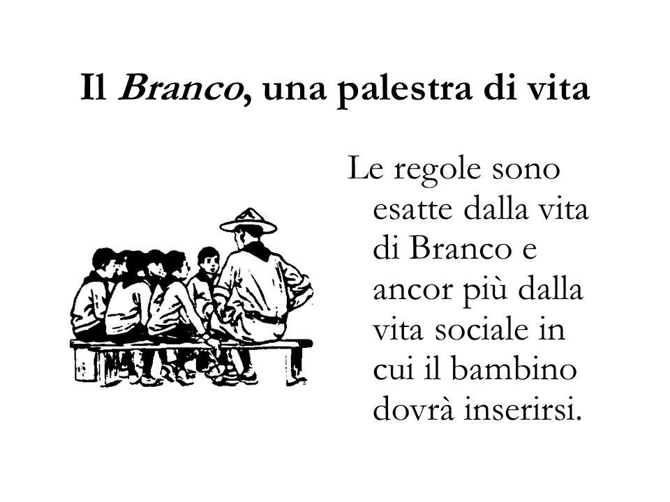 Il Branco, una palestra di vita Le regole sono esatte dalla vita di Branco e ancor più dalla vita sociale in cui il bambino dovrà inserirsi.