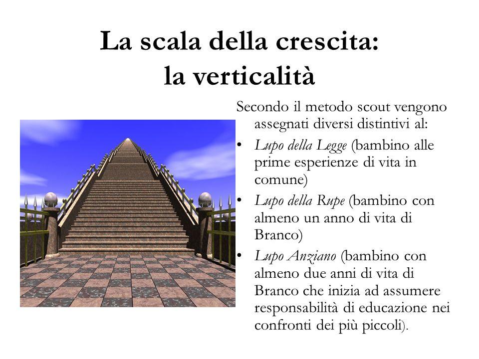 La scala della crescita: la verticalità Secondo il metodo scout vengono assegnati diversi distintivi al: Lupo della Legge (bambino alle prime esperien