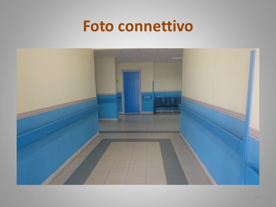 Foto connettivo 13
