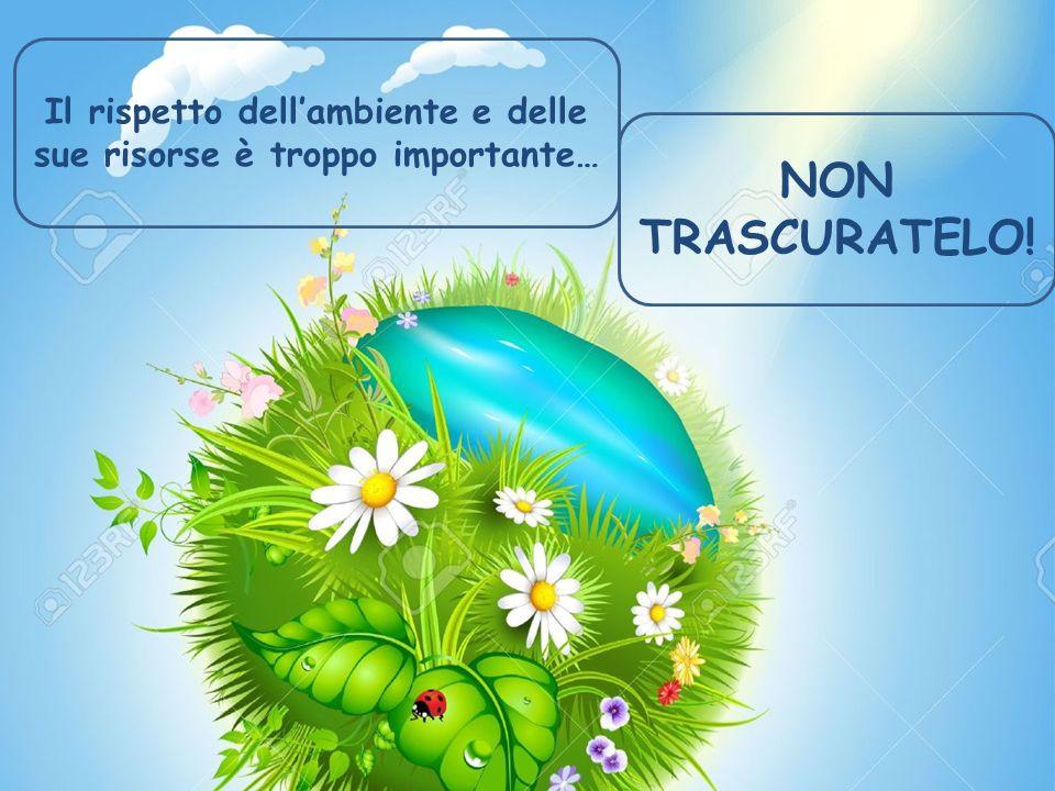 Il rispetto dell'ambiente e delle sue risorse è troppo importante… NON TRASCURATELO!