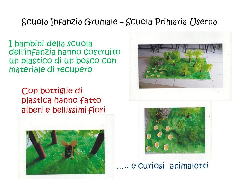 Scuola Infanzia Grumale – Scuola Primaria Userna I bambini della scuola dell'infanzia hanno costruito un plastico di un bosco con materiale di recuper