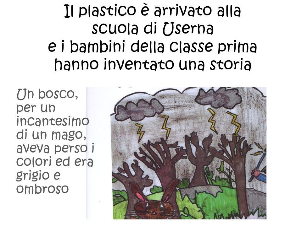 Il plastico è arrivato alla scuola di Userna e i bambini della classe prima hanno inventato una storia Un bosco, per un incantesimo di un mago, aveva