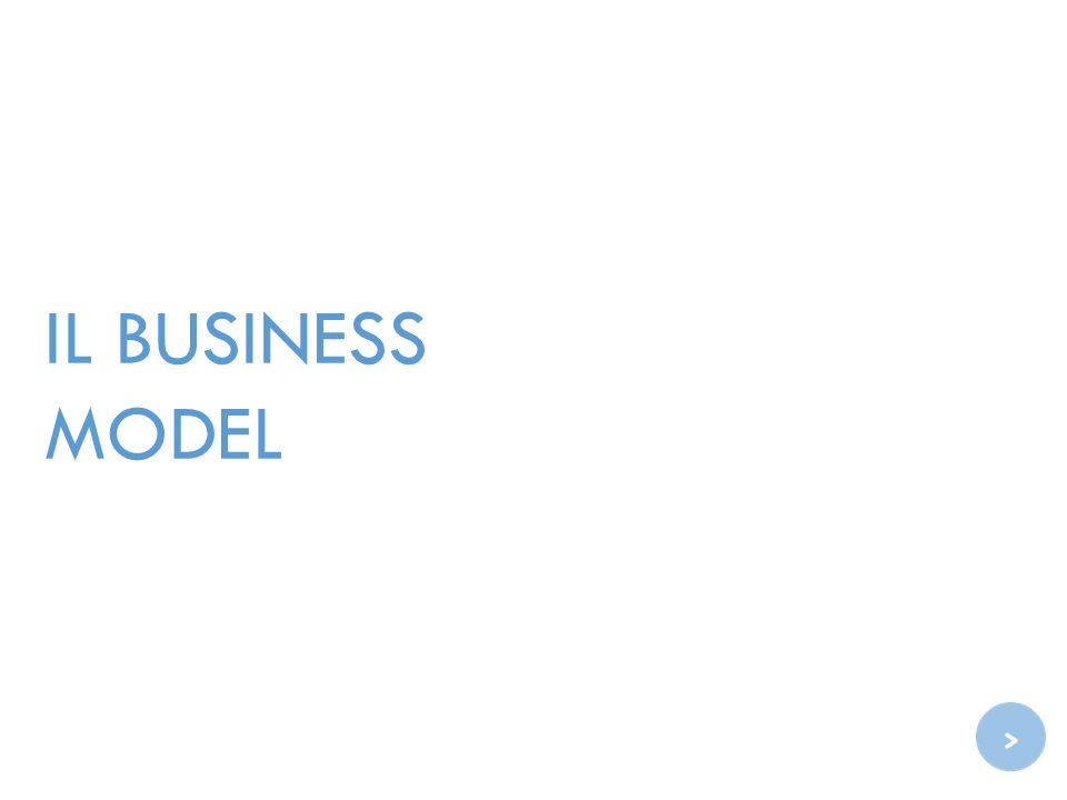 IL BUSINESS MODEL