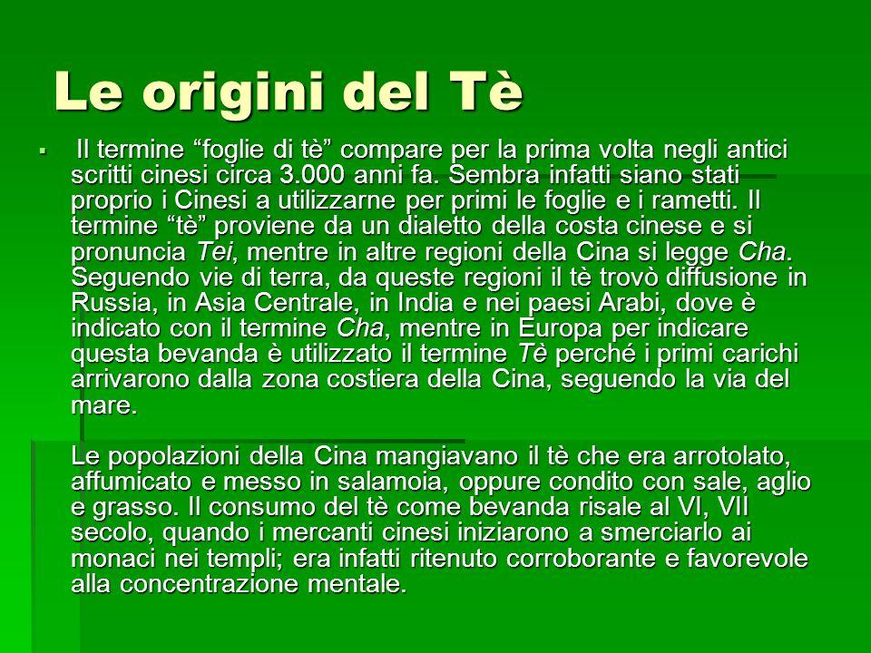  Il tè arrivò in Europa all'inizio del XVII secolo per mano degli Olandesi o dei Portoghesi che all'epoca commerciavano con la Cina: dapprima le merci di scambio erano seta e spezie, poi il tè.