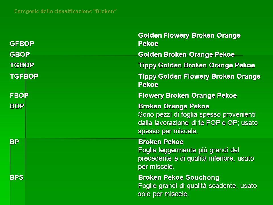 """Categorie della classificazione """"Broken"""" GFBOP Golden Flowery Broken Orange Pekoe GBOP Golden Broken Orange Pekoe TGBOP Tippy Golden Broken Orange Pek"""