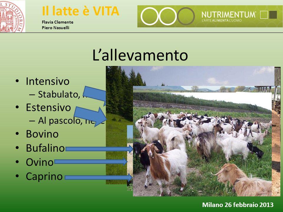Il latte è VITA Flavia Clemente Piero Nasuelli Milano 26 febbraio 2013 L'allevamento Intensivo – Stabulato, nelle diverse forme Estensivo – Al pascolo