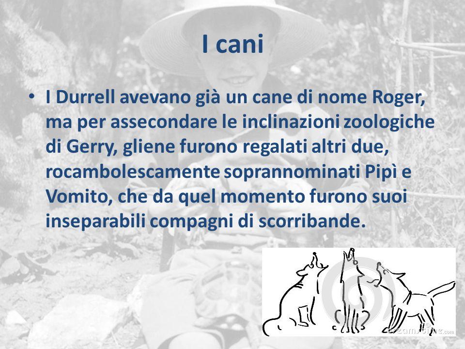 I cani I Durrell avevano già un cane di nome Roger, ma per assecondare le inclinazioni zoologiche di Gerry, gliene furono regalati altri due, rocambol