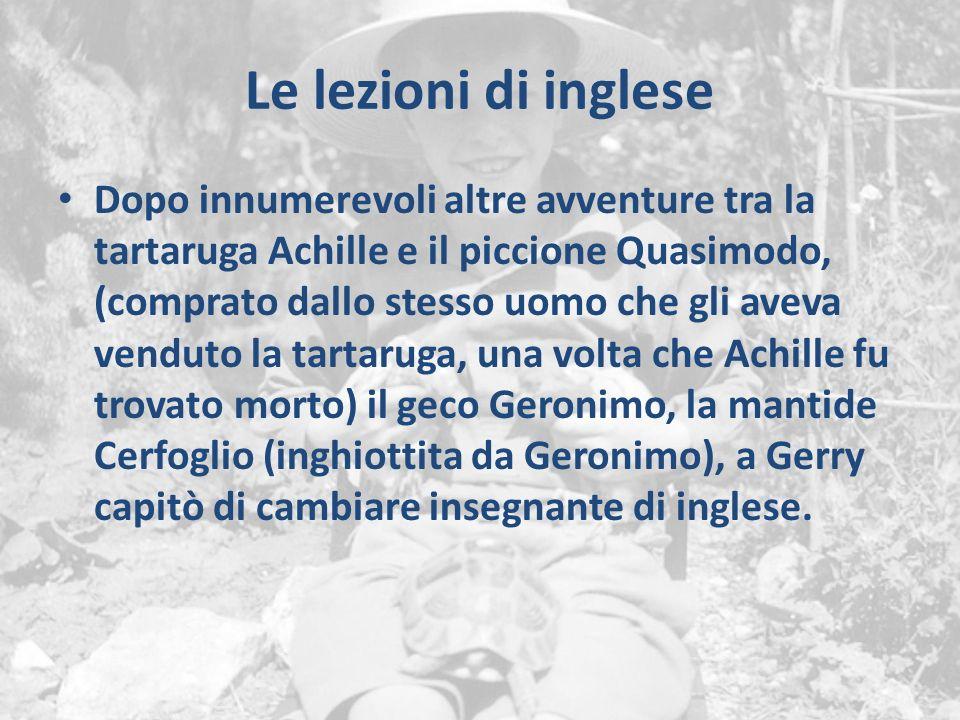 Le lezioni di inglese Dopo innumerevoli altre avventure tra la tartaruga Achille e il piccione Quasimodo, (comprato dallo stesso uomo che gli aveva ve