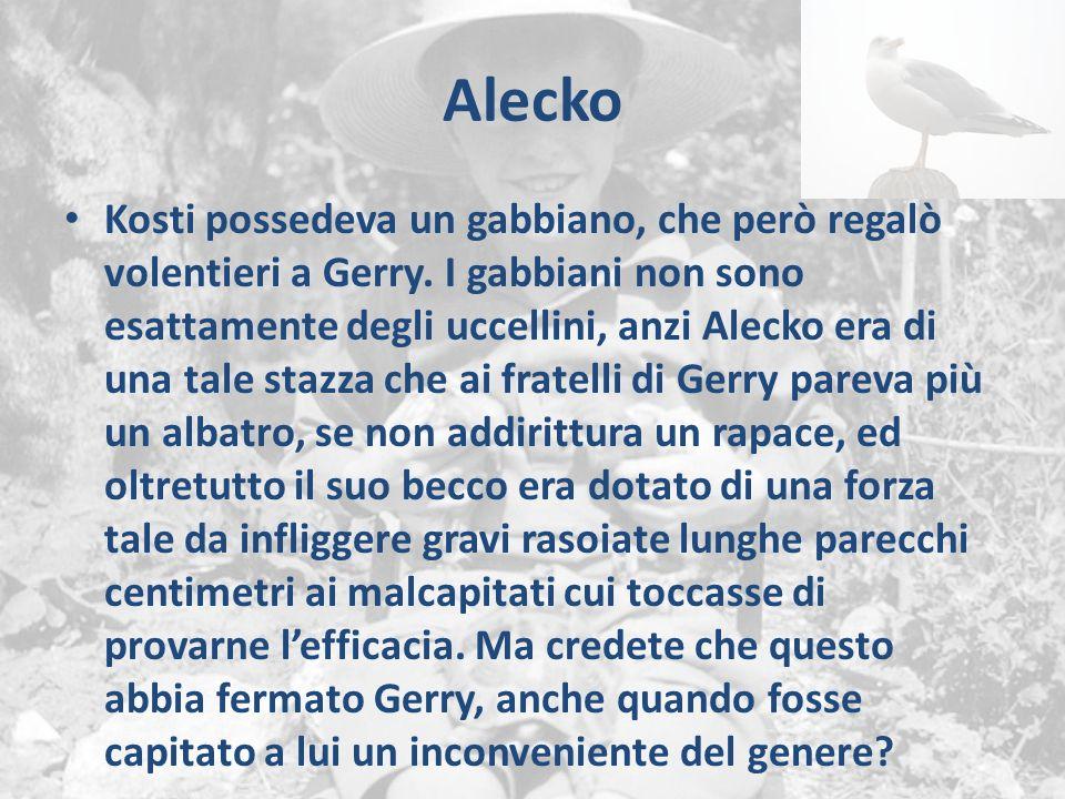 Alecko Kosti possedeva un gabbiano, che però regalò volentieri a Gerry. I gabbiani non sono esattamente degli uccellini, anzi Alecko era di una tale s