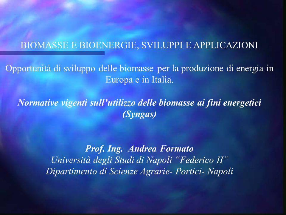 BIOMASSE E BIOENERGIE, SVILUPPI E APPLICAZIONI Opportunità di sviluppo delle biomasse per la produzione di energia in Europa e in Italia. Normative vi